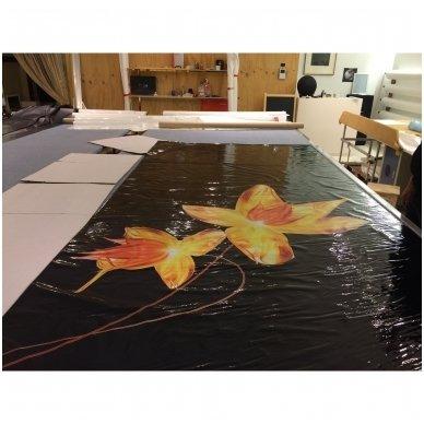 Fotospauda ant įtempiamųjų lubų, m2(ART-LUBOS) 4