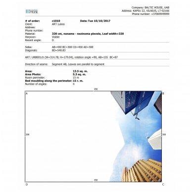 Projektavimo ir paruošiamieji darbai lubų su fotospauda, vnt (ART-LUBOS) 5